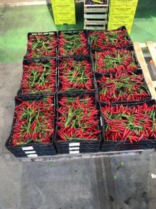 Geni's Obst & Gemüse Fachgroßhandel in Garmisch Partenkirchen - frische Ware